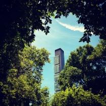 Gratte-ciel vu d'un parc à New York